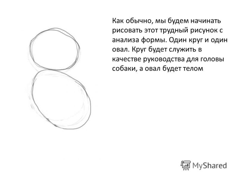 Как обычно, мы будем начинать рисовать этот трудный рисунок с анализа формы. Один круг и один овал. Круг будет служить в качестве руководства для головы собаки, а овал будет телом