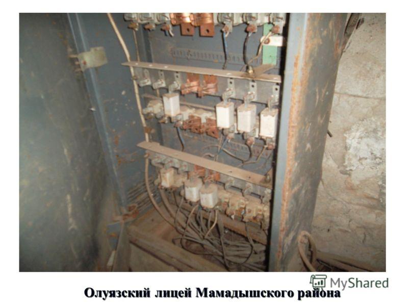 Олуязский лицей Мамадышского района