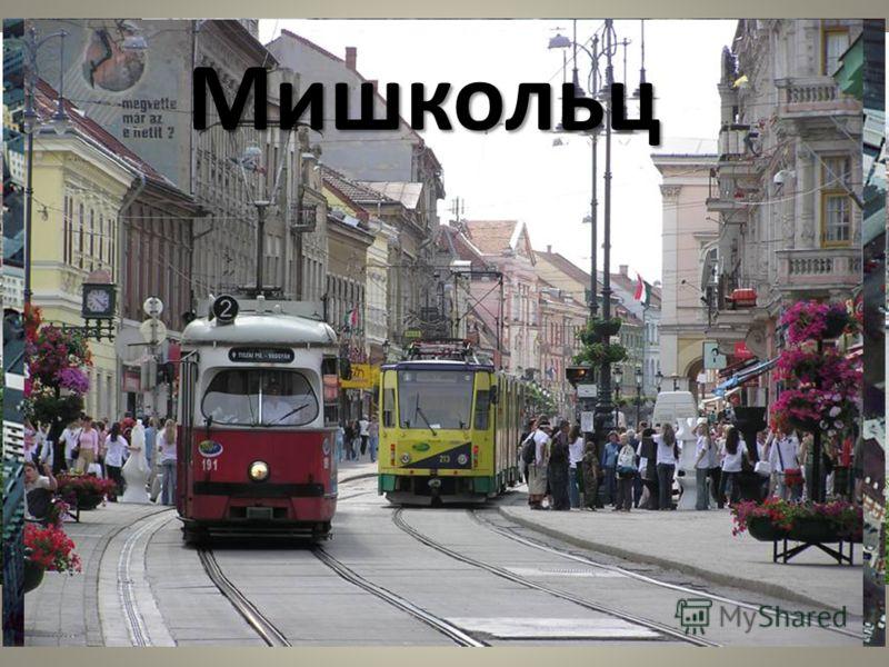 Население Венгры(92.3 %) Родной язык почти 95 % жителей Венгрии венгерский. Наиболее значительные национальные меньшинства цыгане (2 %), немцы (1,2 %), евреи (1 %), румыны (0,8 %), словаки (0,4 %), хорваты (0,2 %), сербы (0,2 %) и украинцы (0,1 %). П