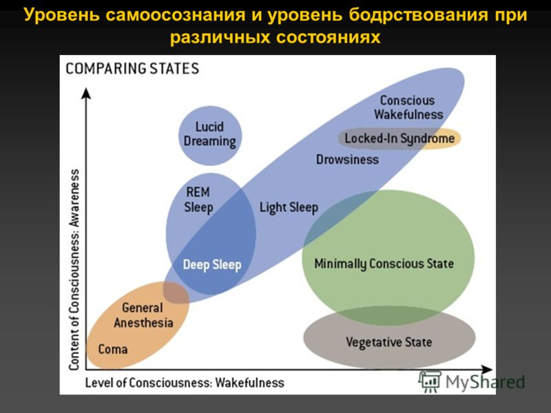 Уровень самоосознания и уровень бодрствования при различных состояниях
