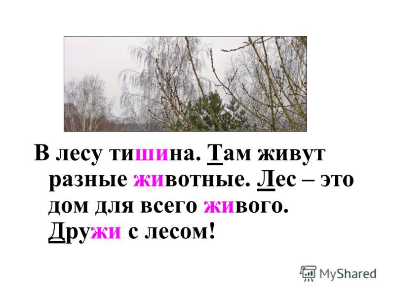 В лесу тиш…на там живут разные ж…вотные лес – это дом для всего ж…вого друж… с лесом!