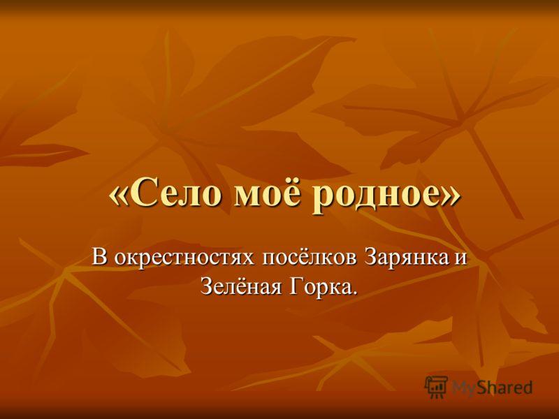 «Село моё родное» «Село моё родное» В окрестностях посёлков Зарянка и Зелёная Горка.