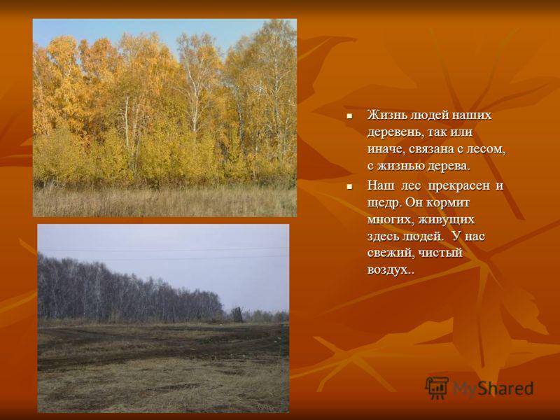 Жизнь людей наших деревень, так или иначе, связана с лесом, с жизнью дерева. Жизнь людей наших деревень, так или иначе, связана с лесом, с жизнью дерева. Наш лес прекрасен и щедр. Он кормит многих, живущих здесь людей. У нас свежий, чистый воздух.. Н
