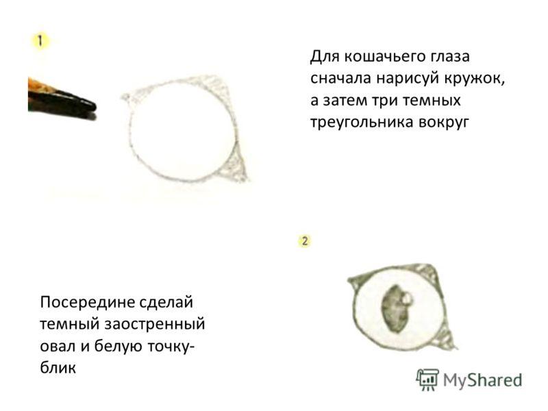 Для кошачьего глаза сначала нарисуй кружок, а затем три темных треугольника вокруг Посередине сделай темный заостренный овал и белую точку- блик