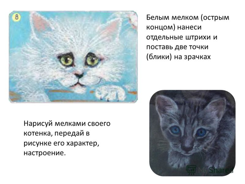Белым мелком (острым концом) нанеси отдельные штрихи и поставь две точки (блики) на зрачках Нарисуй мелками своего котенка, передай в рисунке его характер, настроение.