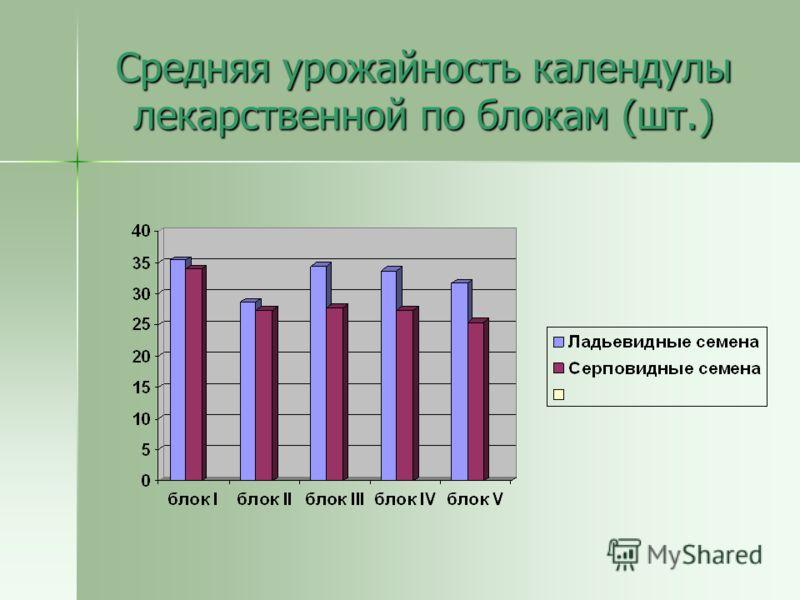 Средняя урожайность календулы лекарственной по блокам (шт.)