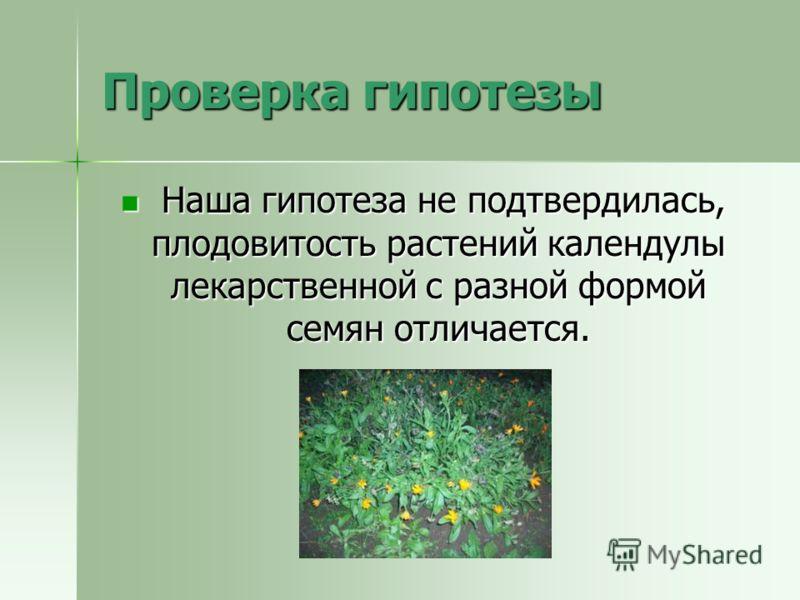 Проверка гипотезы Наша гипотеза не подтвердилась, плодовитость растений календулы лекарственной с разной формой семян отличается. Наша гипотеза не подтвердилась, плодовитость растений календулы лекарственной с разной формой семян отличается.