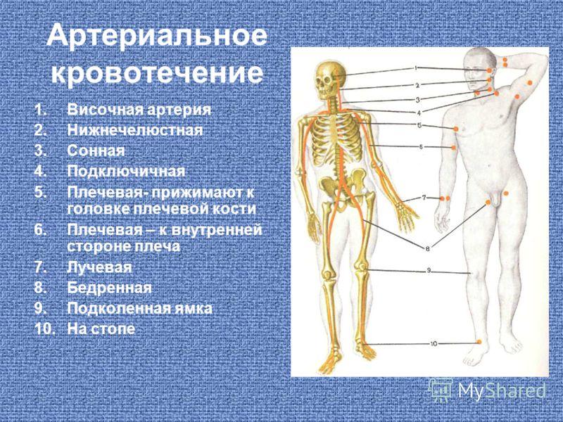 Артериальное кровотечение 1.Височная артерия 2.Нижнечелюстная 3.Сонная 4.Подключичная 5.Плечевая- прижимают к головке плечевой кости 6.Плечевая – к внутренней стороне плеча 7.Лучевая 8.Бедренная 9.Подколенная ямка 10.На стопе