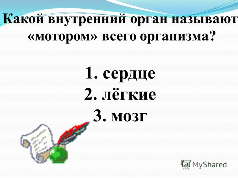Какой внутренний орган называют «мотором» всего организма? 1. сердце 2. лёгкие 3. мозг