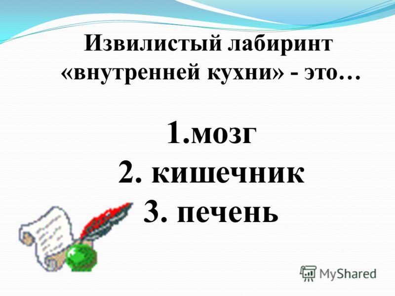 Извилистый лабиринт «внутренней кухни» - это… 1.мозг 2. кишечник 3. печень