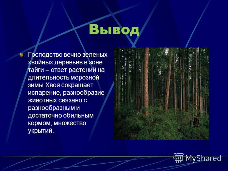 Редкие и исчезающие животные Центрально-лесной биосферный государственный заповедник образован в 1931 году для сохранения южной границы тайги, находится в Тверской области, в 50 километрах к северу от города Нелидово. Орнитофауна заповедника включает