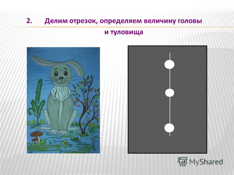 2. Делим отрезок, определяем величину головы и туловища