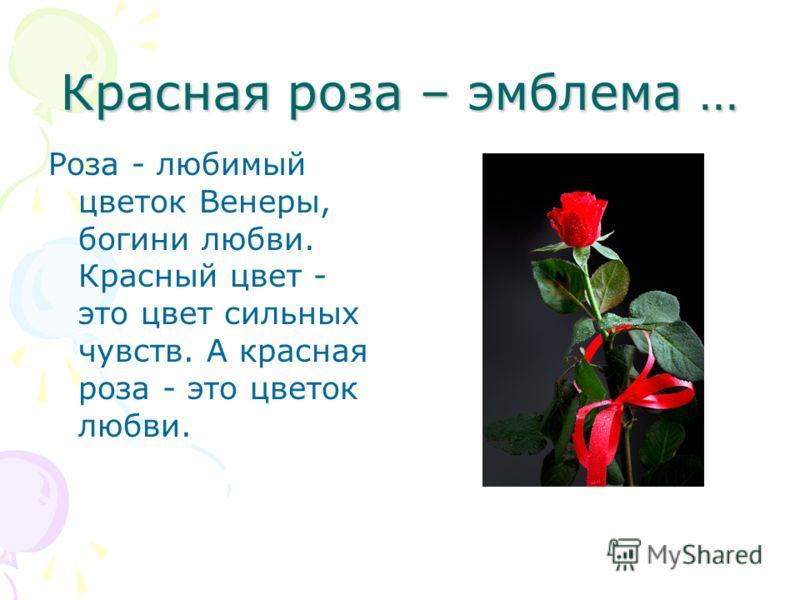 Красная роза – эмблема … Роза - любимый цветок Венеры, богини любви. Красный цвет - это цвет сильных чувств. А красная роза - это цветок любви.