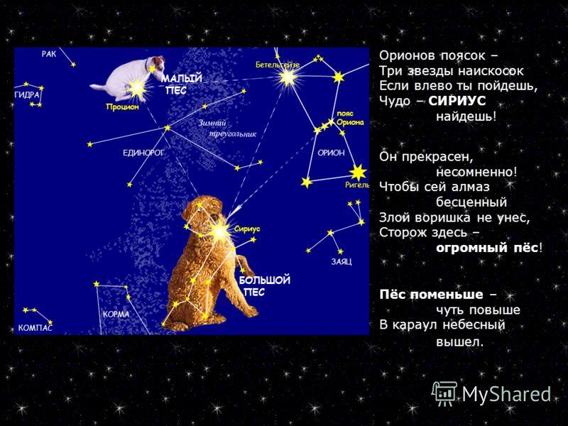 Орионов поясок – Три звезды наискосок Если влево ты пойдешь, Чудо – СИРИУС найдешь! Он прекрасен, несомненно! Чтобы сей алмаз бесценный Злой воришка не унес, Сторож здесь – огромный пёс! Пёс поменьше – чуть повыше В караул небесный вышел.