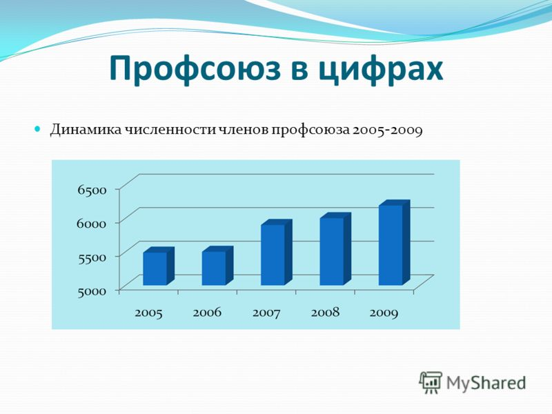 Профсоюз в цифрах Динамика численности членов профсоюза 2005-2009