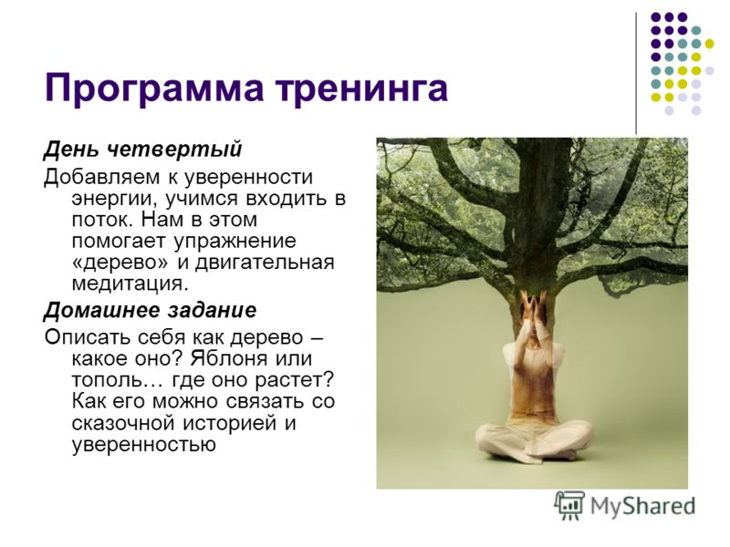 Программа тренинга День четвертый Добавляем к уверенности энергии, учимся входить в поток. Нам в этом помогает упражнение «дерево» и двигательная медитация. Домашнее задание Описать себя как дерево – какое оно? Яблоня или тополь… где оно растет? Как
