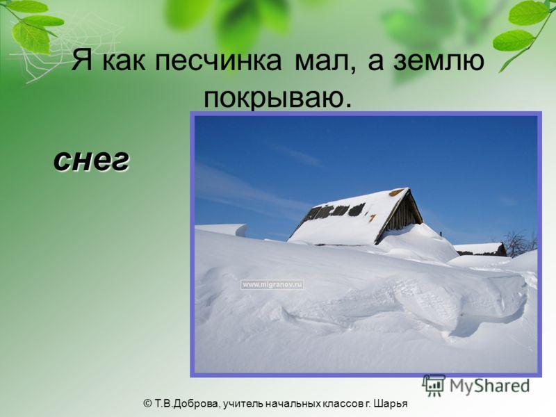 Я как песчинка мал, а землю покрываю. снег © Т.В.Доброва, учитель начальных классов г. Шарья