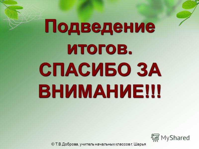Подведение итогов. СПАСИБО ЗА ВНИМАНИЕ!!! © Т.В.Доброва, учитель начальных классов г. Шарья
