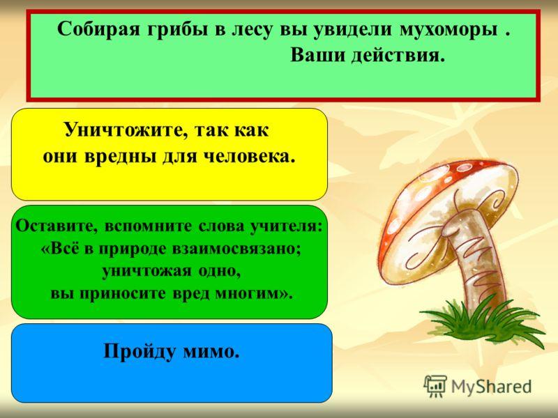 Собирая грибы в лесу вы увидели мухоморы. Ваши действия. Пройду мимо. Уничтожите, так как они вредны для человека. Оставите, вспомните слова учителя: «Всё в природе взаимосвязано; уничтожая одно, вы приносите вред многим».