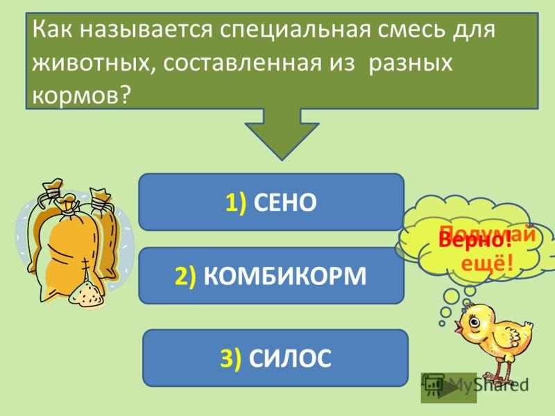 Как называется специальная смесь для животных, составленная из разных кормов? 1) СЕНО 2) КОМБИКОРМ 3) СИЛОС Подумай ещё! Верно!