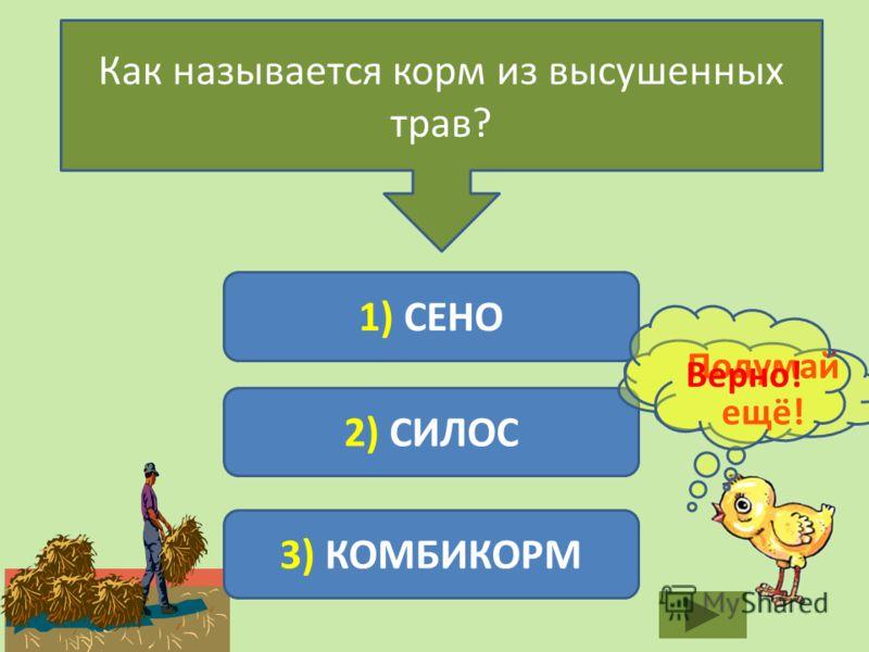 Как называется корм из высушенных трав? 1) СЕНО 2) СИЛОС 3) КОМБИКОРМ Подумай ещё! Верно!