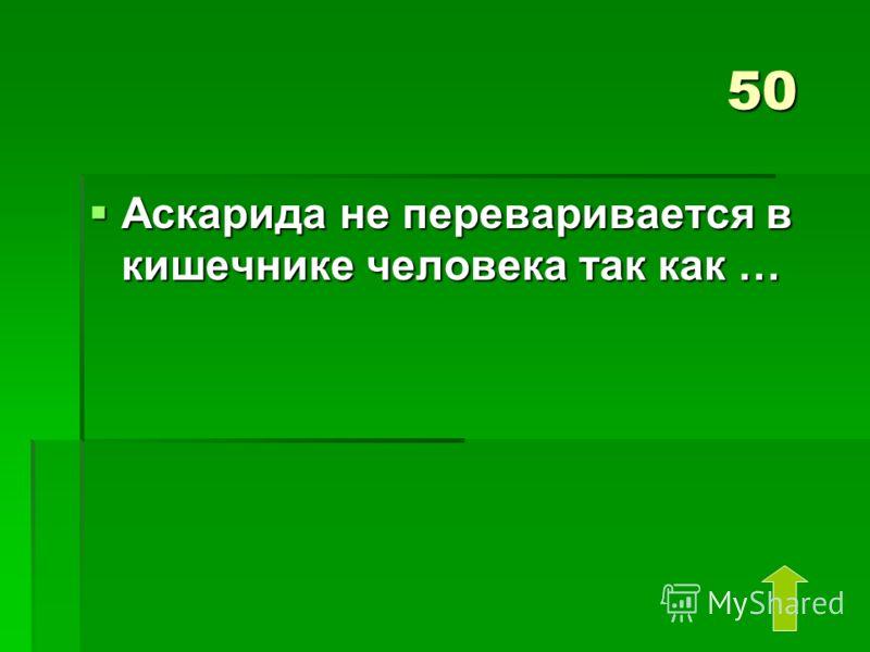 50 Аскарида не переваривается в кишечнике человека так как … Аскарида не переваривается в кишечнике человека так как …