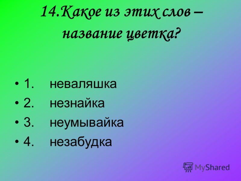 14.Какое из этих слов – название цветка? 1. неваляшка 2. незнайка 3. неумывайка 4. незабудка