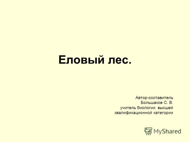Еловый лес. Автор-составитель Большаков С. В. учитель биологии высшей квалификационной категории
