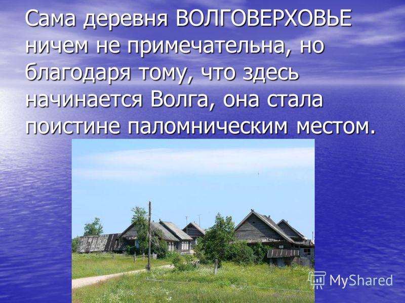 Сама деревня ВОЛГОВЕРХОВЬЕ ничем не примечательна, но благодаря тому, что здесь начинается Волга, она стала поистине паломническим местом.
