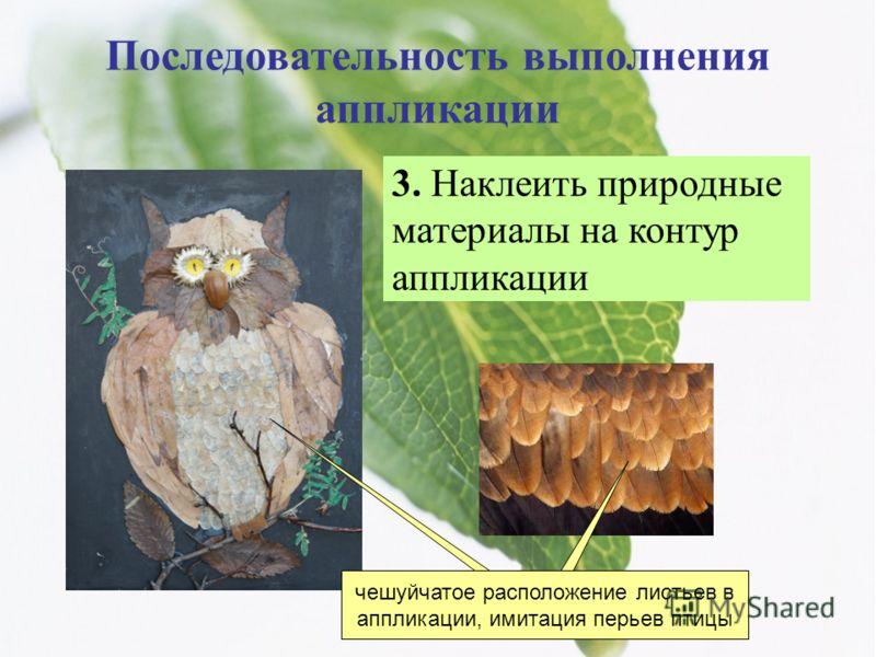 Последовательность выполнения аппликации 3. Наклеить природные материалы на контур аппликации чешуйчатое расположение листьев в аппликации, имитация перьев птицы