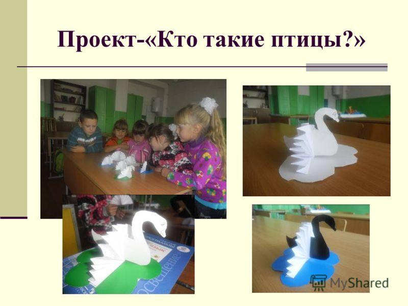 Проект-«Кто такие птицы?»
