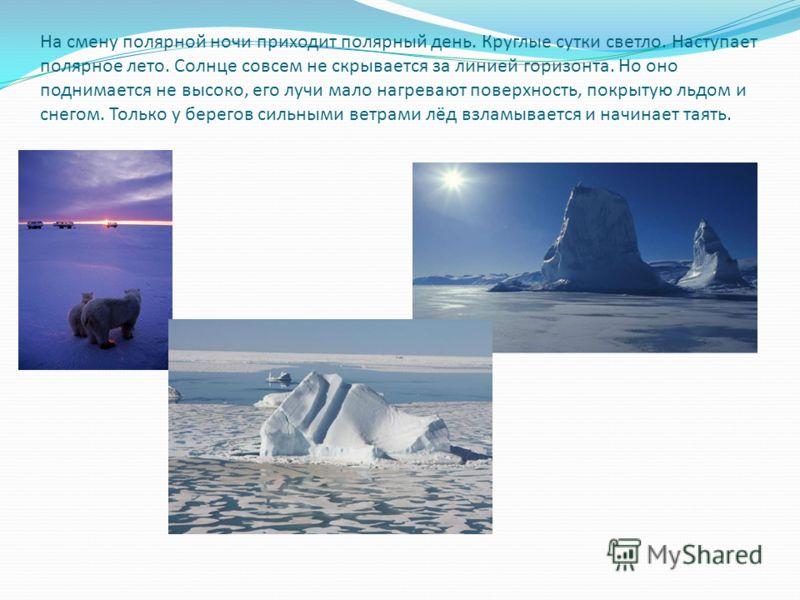 На смену полярной ночи приходит полярный день. Круглые сутки светло. Наступает полярное лето. Солнце совсем не скрывается за линией горизонта. Но оно поднимается не высоко, его лучи мало нагревают поверхность, покрытую льдом и снегом. Только у берего