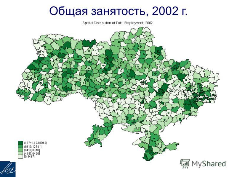 Общая занятость, 2002 г.
