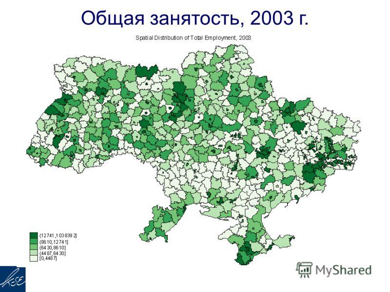 Общая занятость, 2003 г.
