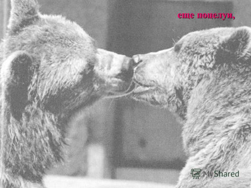 еще поцелуи,
