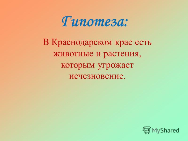 Гипотеза: В Краснодарском крае есть животные и растения, которым угрожает исчезновение.