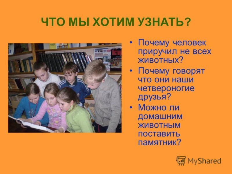 Тема исследования: ДОМАШНИЕ ЖИВОТНЫЕ Выполнили ученики 3 «б» класса МОУ СОШ 7. Руководитель: Поленская О. В.