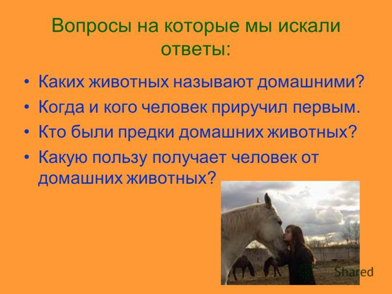 ЧТО МЫ ХОТИМ УЗНАТЬ? Почему человек приручил не всех животных? Почему говорят что они наши четвероногие друзья? Можно ли домашним животным поставить памятник?