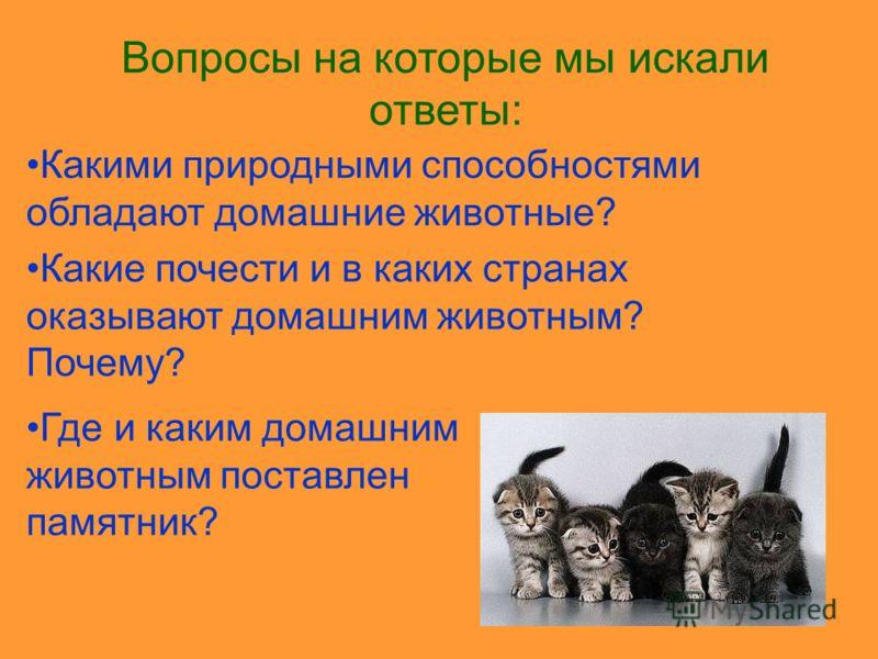 Вопросы на которые мы искали ответы: Каких животных называют домашними? Когда и кого человек приручил первым. Кто были предки домашних животных? Какую пользу получает человек от домашних животных?