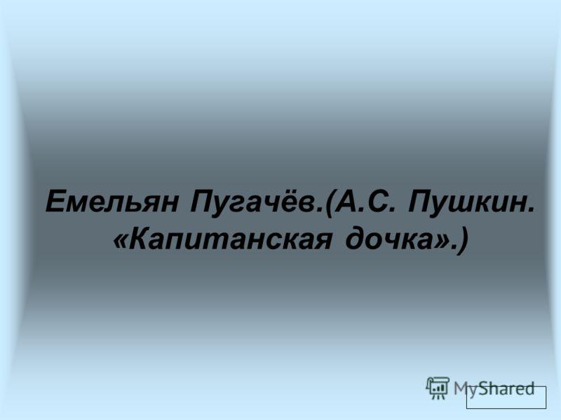 Емельян Пугачёв.(А.С. Пушкин. «Капитанская дочка».)