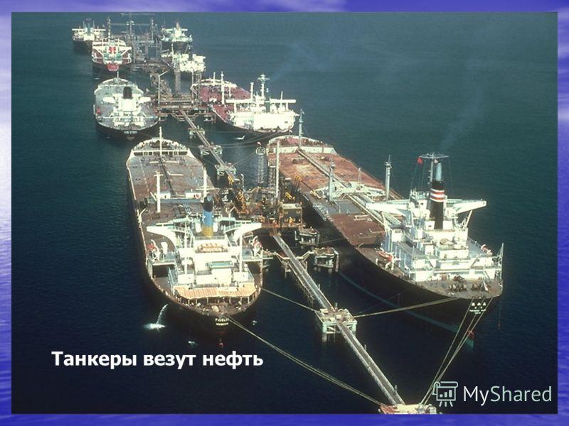 Это также минеральные ресурсы дна Океана. Среди ресурсов континентального шельфа наибольшее значение имеют нефть и природный газ.