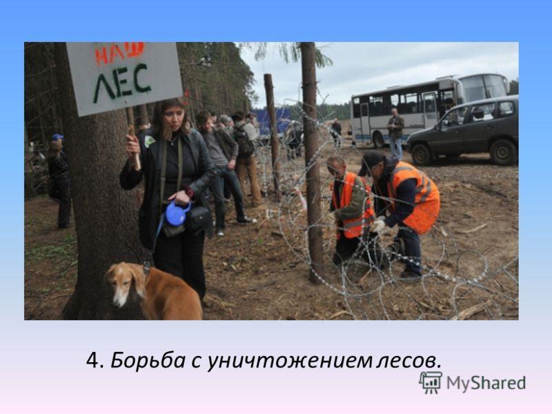 4. Борьба с уничтожением лесов.