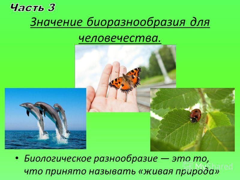 Значение биоразнообразия для человечества. Биологическое разнообразие это то, что принято называть «живая природа»