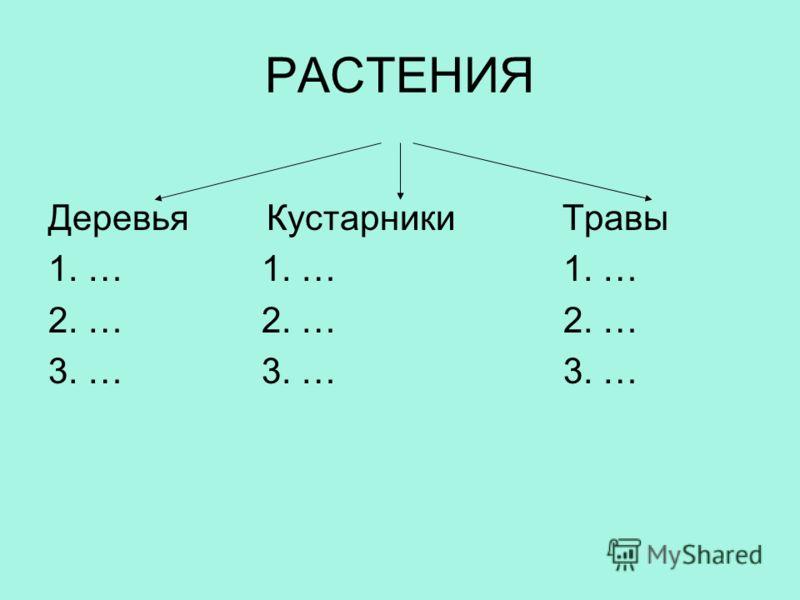 РАСТЕНИЯ Деревья Кустарники Травы 1. … 1. … 1. … 2. … 2. … 2. … 3. … 3. … 3. …