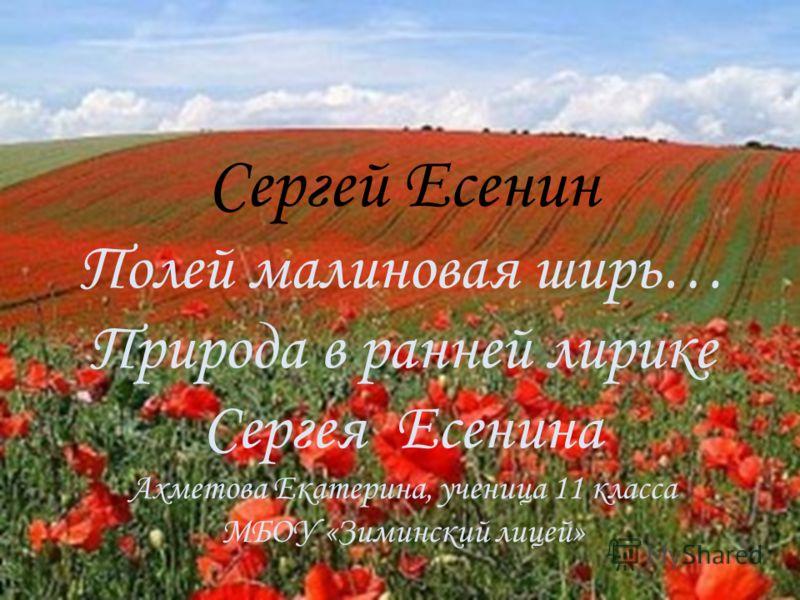 Сергей есенин полей малиновая ширь