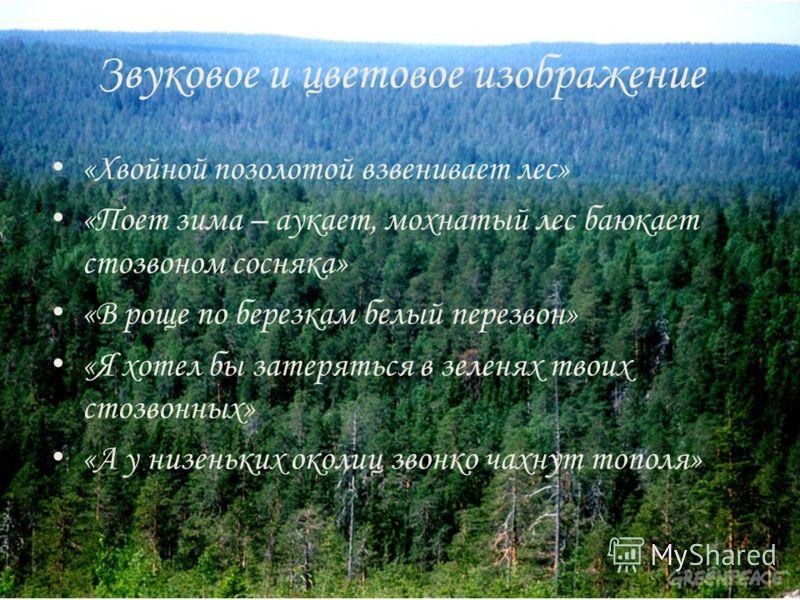 Звуковое и цветовое изображение «Хвойной позолотой взвенивает лес» «Поет зима – аукает, мохнатый лес баюкает стозвоном сосняка» «В роще по березкам белый перезвон» «Я хотел бы затеряться в зеленях твоих стозвонных» «А у низеньких околиц звонко чахнут