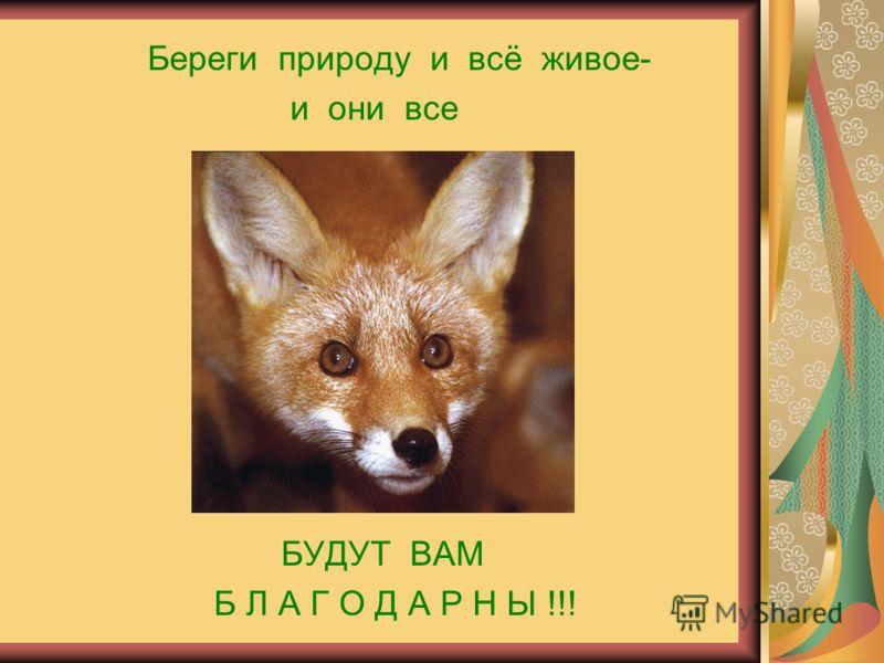 Береги природу и всё живое- и они все БУДУТ ВАМ Б Л А Г О Д А Р Н Ы !!!