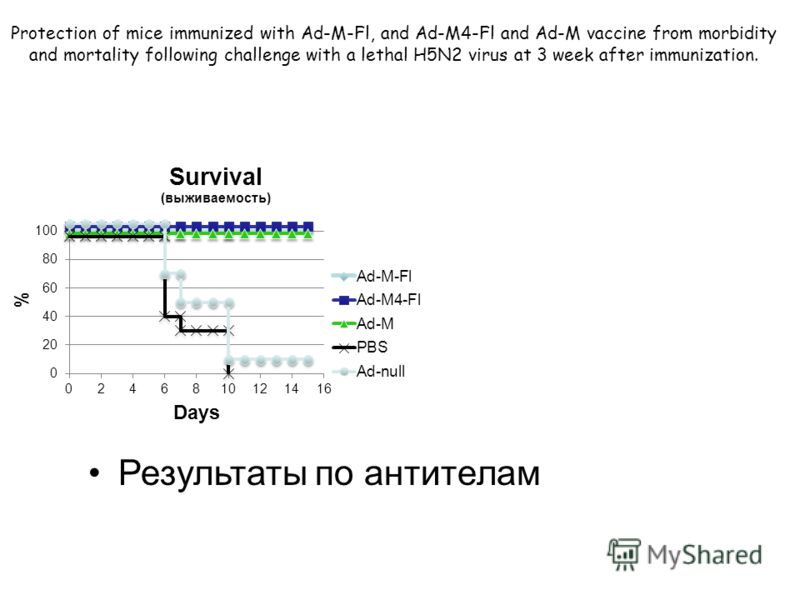 Protection of mice immunized with Ad-M-Fl, and Ad-M4-Fl and Ad-M vaccine from morbidity and mortality following challenge with a lethal H5N2 virus at 3 week after immunization. Результаты по антителам