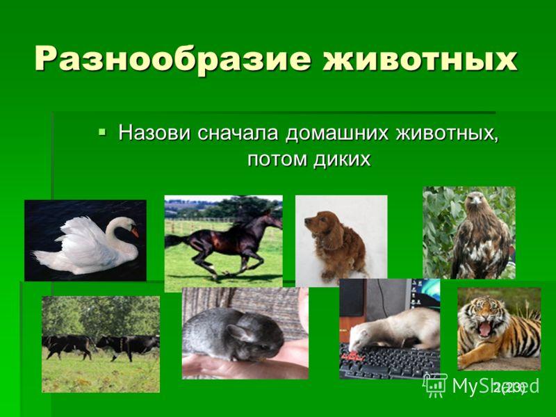 Разнообразие животных Назови сначала домашних животных, потом диких Назови сначала домашних животных, потом диких 2(23)