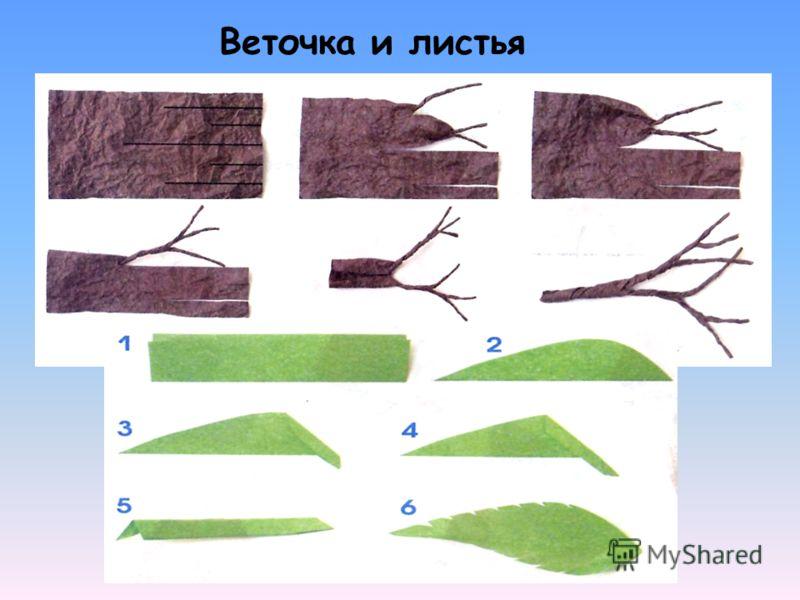 Веточка и листья